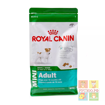 ROYAL CANIN пауч комплект  корм для собак MINI Adult Мини адулт 85г.мелких пород